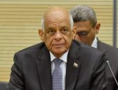 على عبد العال - رئيس مجلس النواب