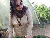 الدكتورة بثينة كشك، وكيل وزارة التربية والتعليم بكفر الشيخ