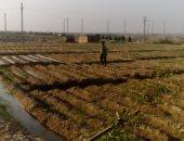 الأرض المخصصة لإنشاء محطة كهرباء جرزا