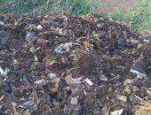 القمامة بمدخل القرية