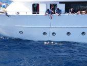 المركب اثناء القاء الاطعمة للقروش