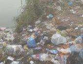 القمامة تغرق منطقة العوايد