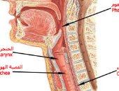 التهاب سقف الحلق