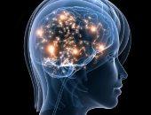 يلعب السيروتونين دورًا مهمًا في العديد من وظائف الجسم الأخرى