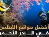مواقع الغطس فى البحر الأحمر