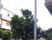 الأسلاك فوق المنازل