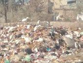 انتشار القمامة-ارشيفية