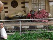 مشردين بمحطة ترام بالأسكندرية