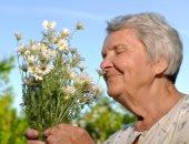 حاسة الشم عند كبار السن