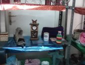 معرض للمنتجات والمشغولات اليدوية