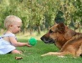 طرق تعامل الأطفال مع الكلاب-أرشيفية