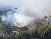 الحرائق تجتاح جزيرة كناريا السياحية