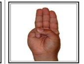 حروف الابجديه بلغة الإشارة