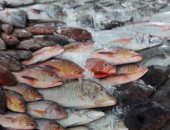 سوق السمك