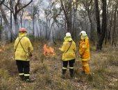 حرائق الغابات فى استراليا