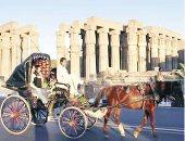 وزير السياحة والاثار خالد عناني