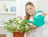 الإهتمام بالنباتات