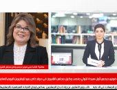 النائبة فيبى فوزى وكيل مجلس الشيوخ خلال لقائها بتليفزيون اليوم السابع