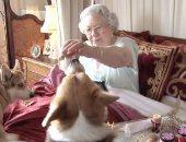 الملكة إليزابيث مع كلابها