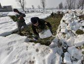 الزراعة فى الثلج بالهند