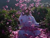 مدينة الورود فى السعودية