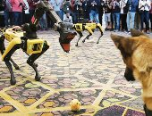 الكلب الروبوت