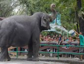 حدائق حيوانات مانيلا
