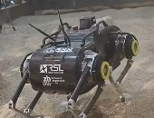 روبوت رباعى الأرجل