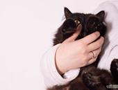 فتاة تحتضن قطة