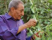 الشاعر الكبير الراحل عبد الرحمن الأبنودى