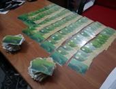 بطاقات تموينية - أرشيفية
