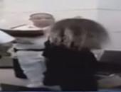 جانب من حادث الاعتداء على ضابط بالمطار
