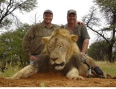 دكتور الأسنان قاتل الحيوانات البرية الهارب