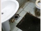 سوء مستوى نظافة حمامات مستشفى الجلاء