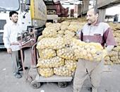 ارتفاع تصدير البطاطس خلال يونيو
