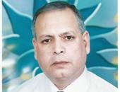 المهندس محمد فهمى البيك رئيس مركز ومدينة العريش