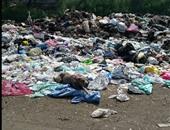 القمامة خلف المصنع