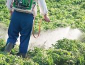رش المبيدات الزراعية