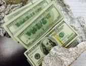 دولارات فى المحشى