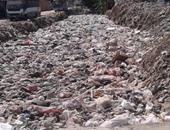 انتشار القمامة بترعة أم بيومى
