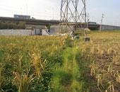 البناء على الأراضى الزراعية