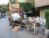 عربة كارو– أرشيفية