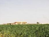 جامعة مدينة السادات - أرشيفية