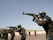 عناصر من الجيش اليمنى