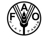"""منظمة الأمم المتحدة للأغذية والزراعة """"فاو"""""""