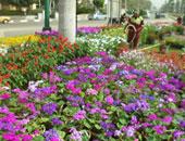بستان ورود - صورة أرشيفية