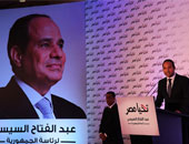 محمد بهاء أبو شقة، المتحدث الرسمي باسم حملة الرئيس السيسى