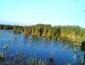بحيرة البرلس -  أرشيفية