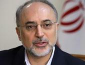 على أكبر صالحى مدير منظمة الطاقة النووية الإيرانية