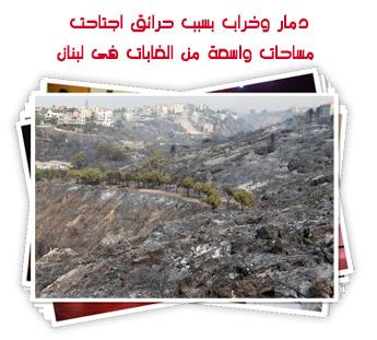 دمار وخراب بسبب حرائق اجتاحت مساحات واسعة من الغابات فى لبنان